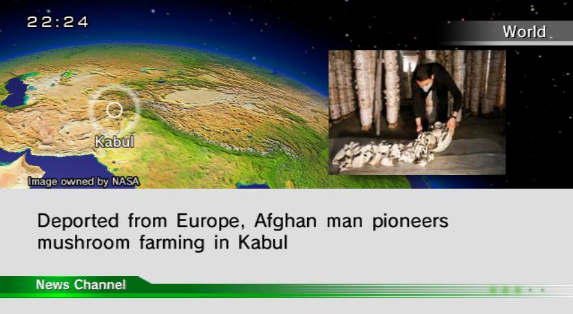 A News Channel screenshot from a Dolphin emulator.